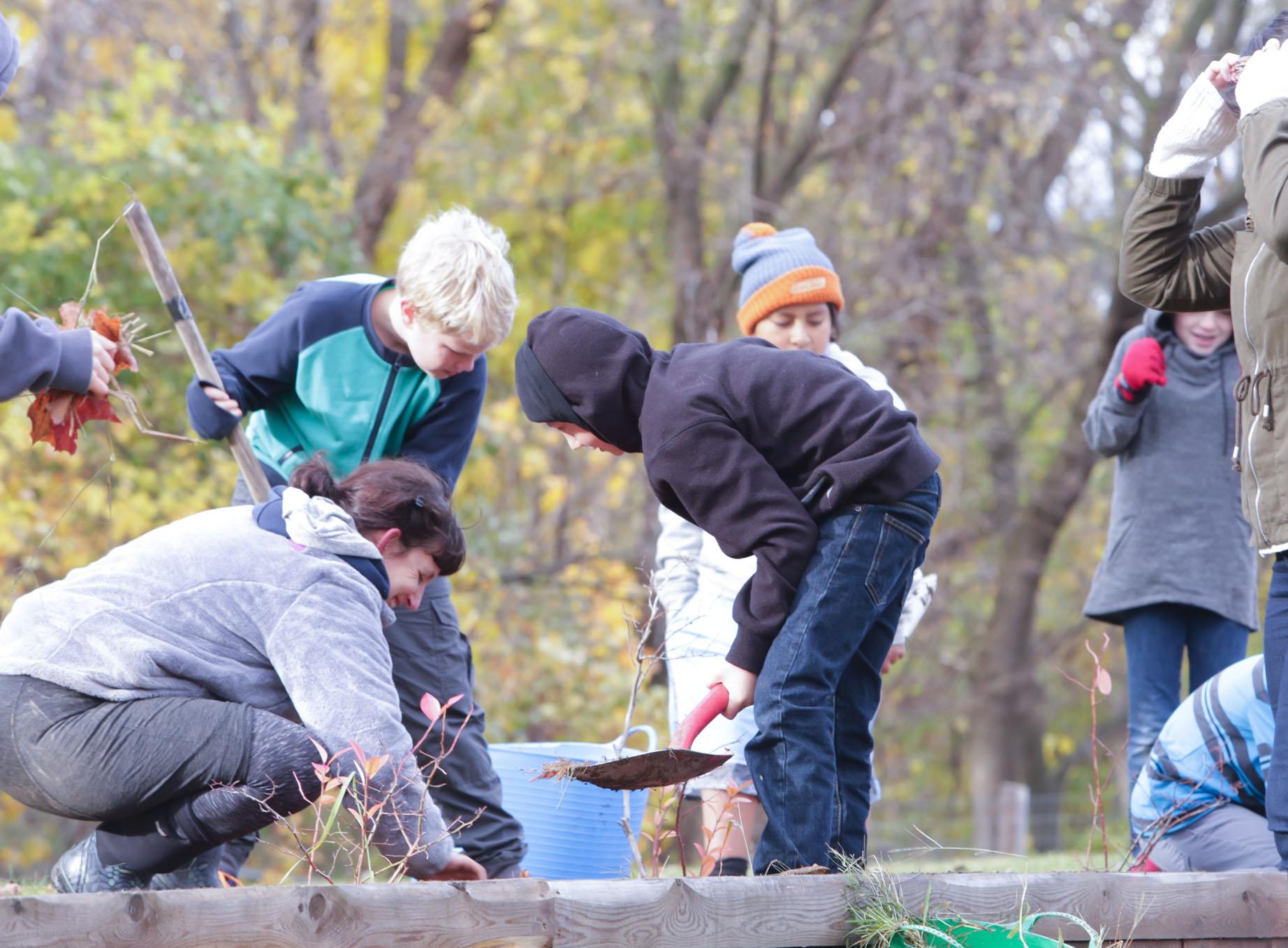 Champlain Gardening